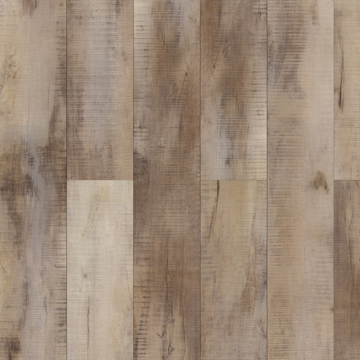 PlankIt W 2010 Arya