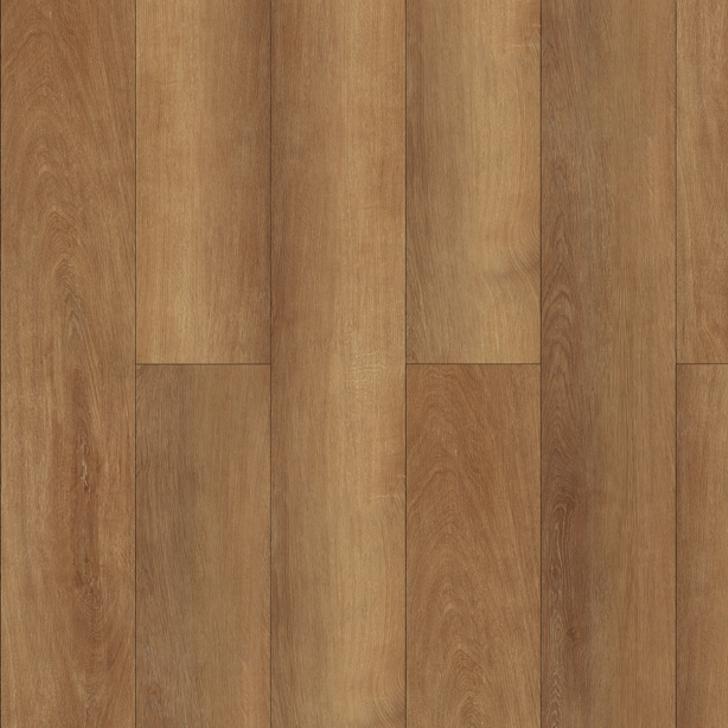 PlankIt W 2012 Doreah