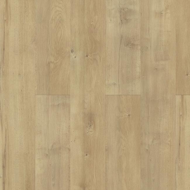 Plank It wood 2003 F Reed